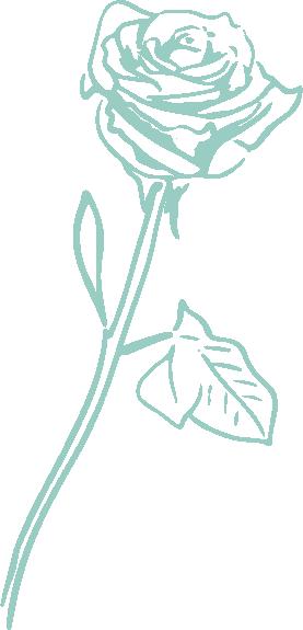 Hopscotch-rose